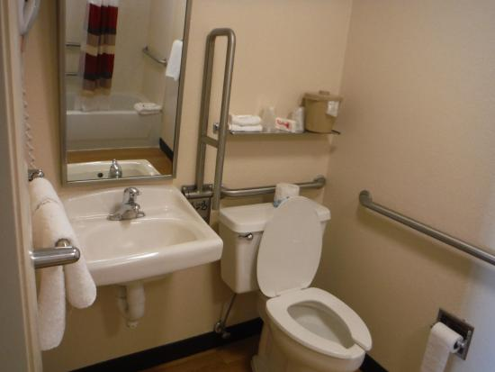 handicapped and accessible design contemporary photo showers universal handicap bathroom cleveland