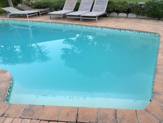 iNtaba River Lodge: Da will keiner rein - das Wasser im Pool war milchig und dreckig.