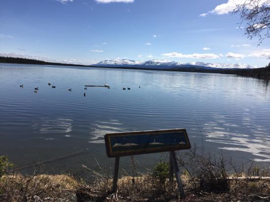Willow Lake B&B : photo2.jpg