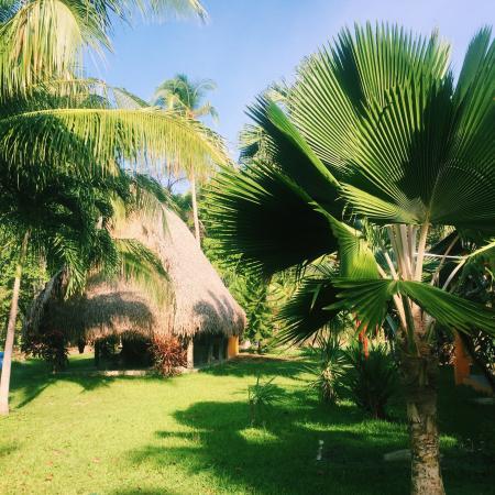 El Ranchito Surfcamp
