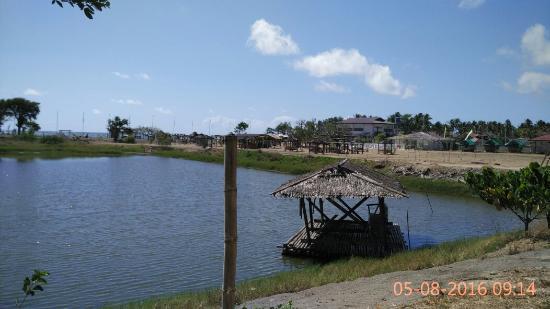 Southcrest Beach Resort and Nature Park: IMG_20160508_091423_large.jpg