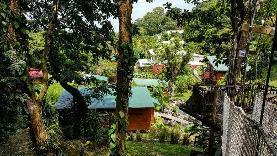 Saint-Claude, Guadeloupe: 20160423_105738_large.jpg