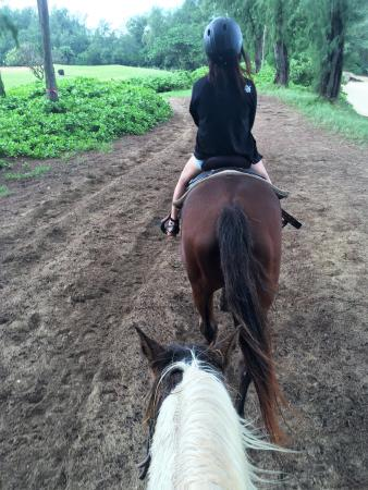 Horse Riding and Sunset at North Shore - Musashi Tours: 先頭の馬は、隊列を乱さない様に非常に重要です。