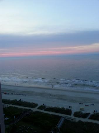 棕櫚套房海灘飯店照片