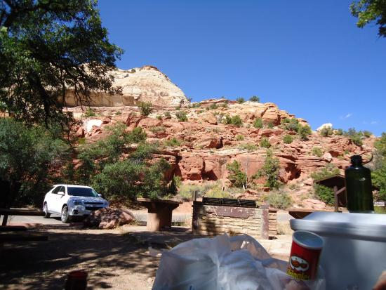 Calf Creek Falls Recreation Area: View from our picnic table near entrance