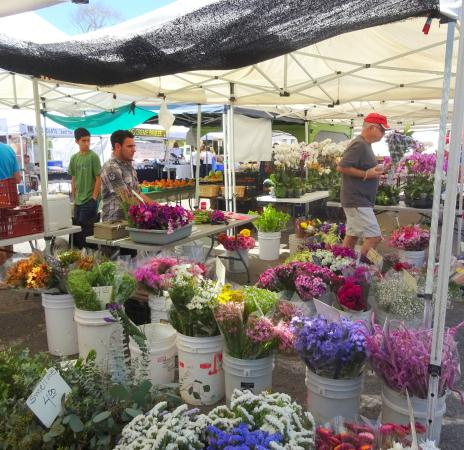 Del Mar, Καλιφόρνια: A Huge Flower Selection