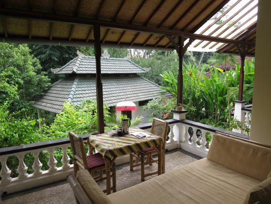 White Lotus Yoga & Meditation Centre: バルコニー