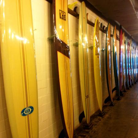 Texas Surf Museum: Surfboards on Display