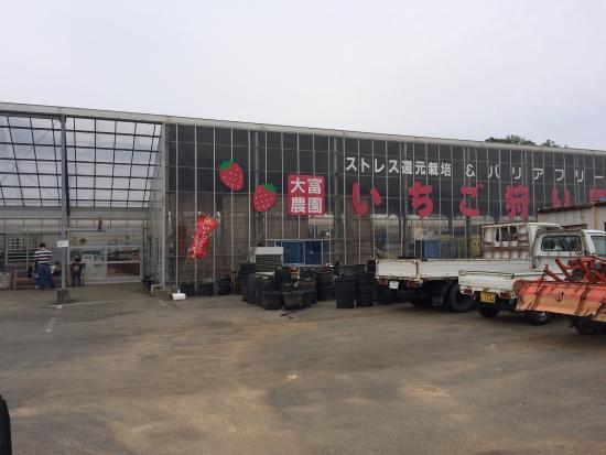Ootomi Farm