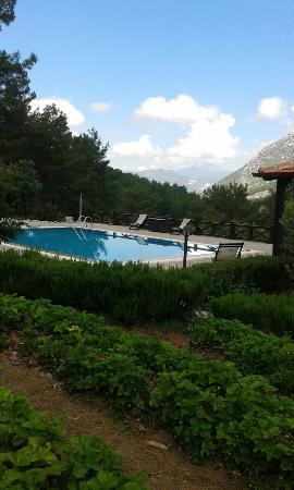 Yesiluzumlu, Turki: TA_IMG_20160509_105103_large.jpg