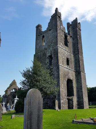 Duleek, İrlanda: square tower with the remains of the original round tower behind the tree