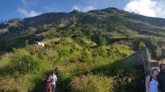 Ubud Sunrise Trekking