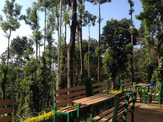 Kaivalyam Retreat: территория отеля
