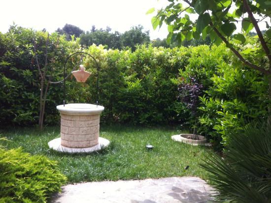 Il Limoncello : giardino