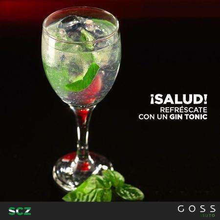 Goss : Refrescante con nuestro Gin Tonic!