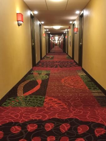 Holiday Inn Mt. Kisco (Westchester Cty): Super long horror-movie hallway