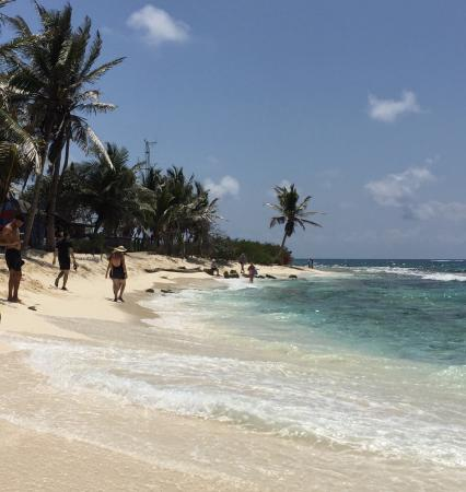 San Andres Guided Segway Tours: photo6.jpg