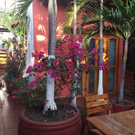 Hotel 3 Banderas: photo9.jpg