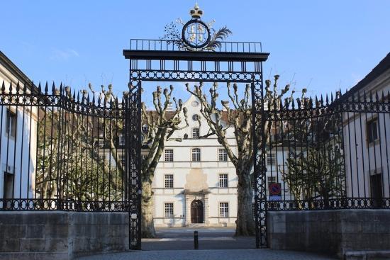 Chateau de Delemont