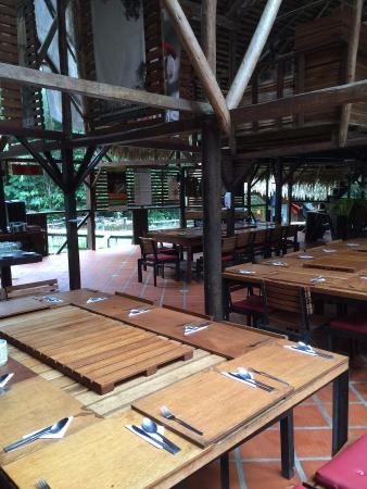 Jungle lodge - a fun discovery of the Amazonia