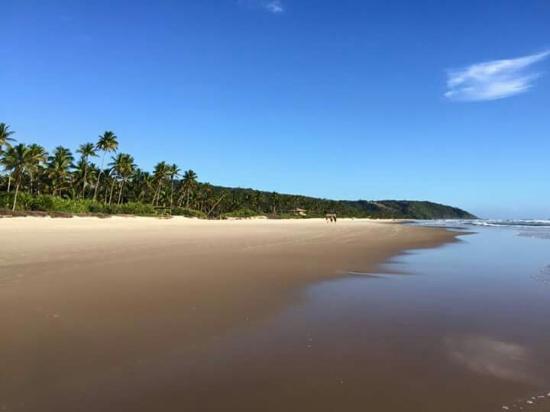 Sargi Beach