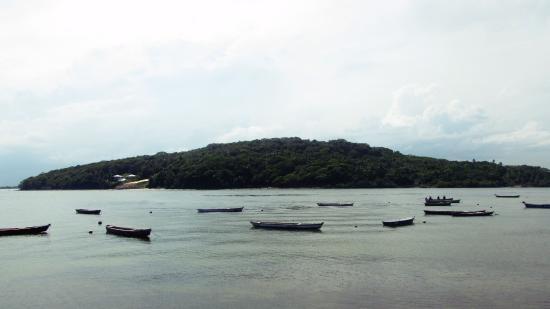 Barra de Catuama Beach: Lindas paisagens.