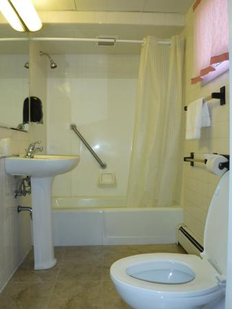 Brewer and Village Green Motor Inn : The bathrooms are modern and spacious.