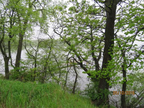 Spirit Lake, IA: photo1.jpg