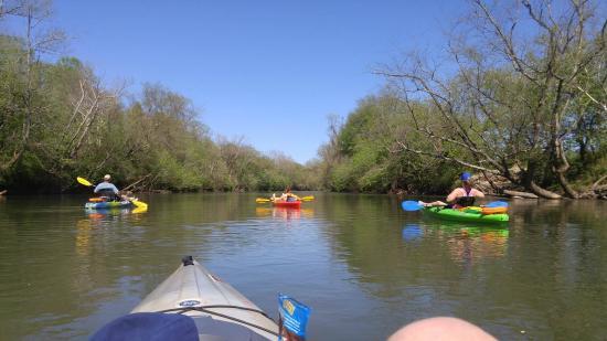 Elkin, Carolina del Norte: Paddling on the Yadkin River