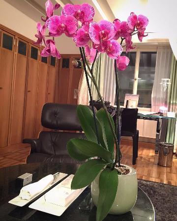 Widder Hotel: photo0.jpg