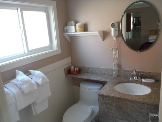 SeaCoast Inn: Basin and toilet.