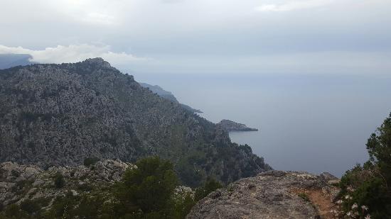 Un coin de paradis pour amoureux de nature et calme