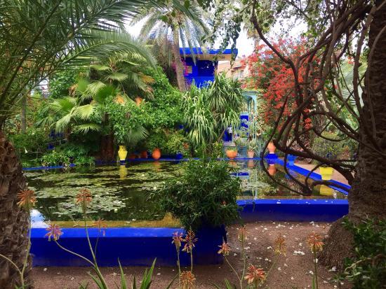 Photo5 Jpg Bild Von Majorelle Garten Jardin Majorelle