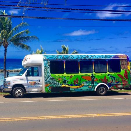 The Surf Bus