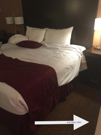 Best Western Innsuites Phoenix Hotel Suites Rug To Right Of Bed Was Wet And