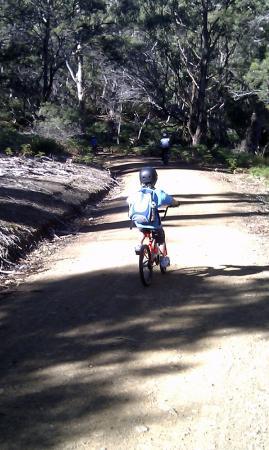 แทสมาเนีย, ออสเตรเลีย: Take or hire bikes and explore the island. Even our little kids made it as far as the isthmus &