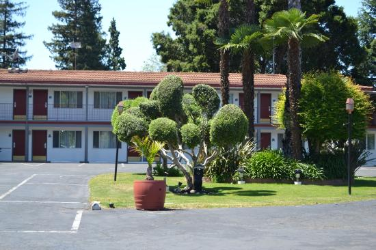 The Palo Alto Inn: Open spacious grounds