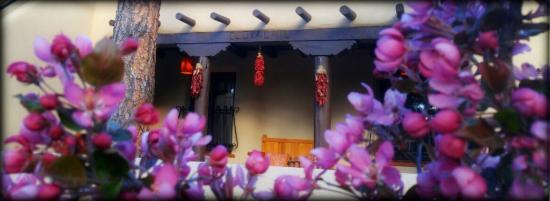 Springtime at Adobe Inn at Cascade
