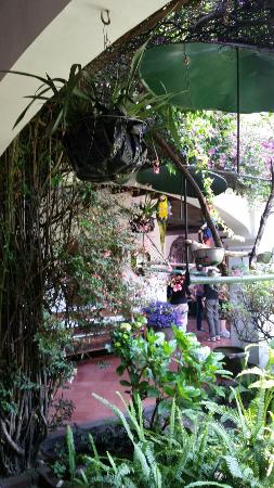 Santo Tomas Hotel: 20160501_123112_large.jpg
