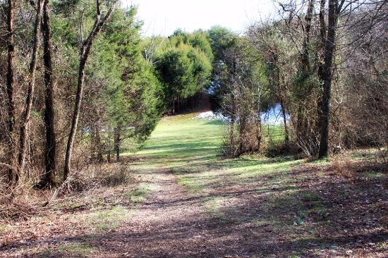 Winged Deer Park : Beautiful Park