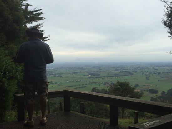 Maungakawa Scenic Reserve: photo0.jpg