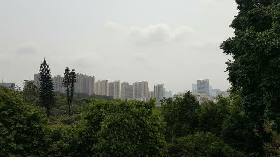 Nanning Picture