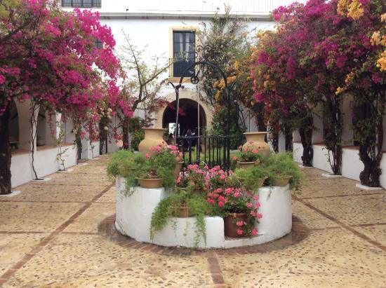 Las Cabezas de San-Juan, Ισπανία: Le patio