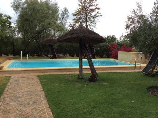 Las Cabezas de San-Juan, Ισπανία: La piscine