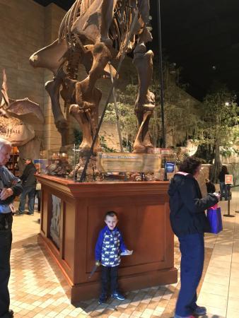Having Fun Picture Of Creation Museum Petersburg