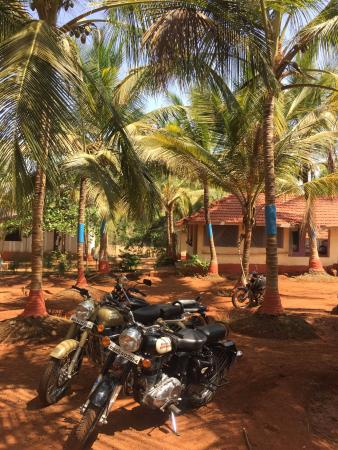 Tranquillity Beach Resort : Parking area and rooms