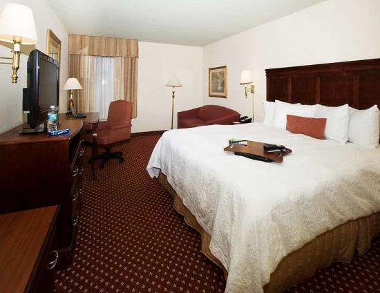 Hampton Inn Savannah -  I-95 North: King Room
