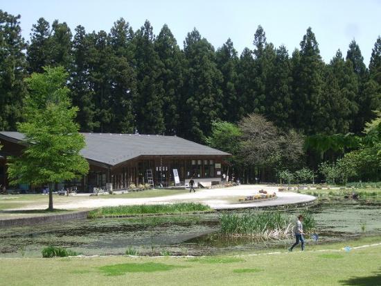 Nikko Daiyagawa Park