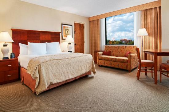 奧蘭多/艾爾塔蒙特溫泉希爾頓飯店