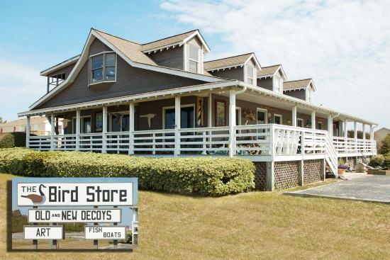 The Bird Store - The Outer Banks Wildlife Gallery